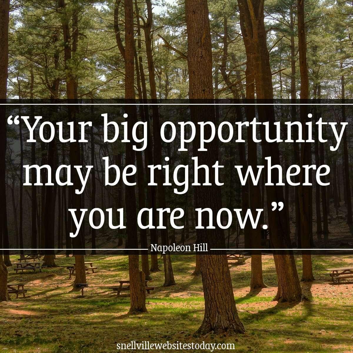 Website Design - Your big opportunity